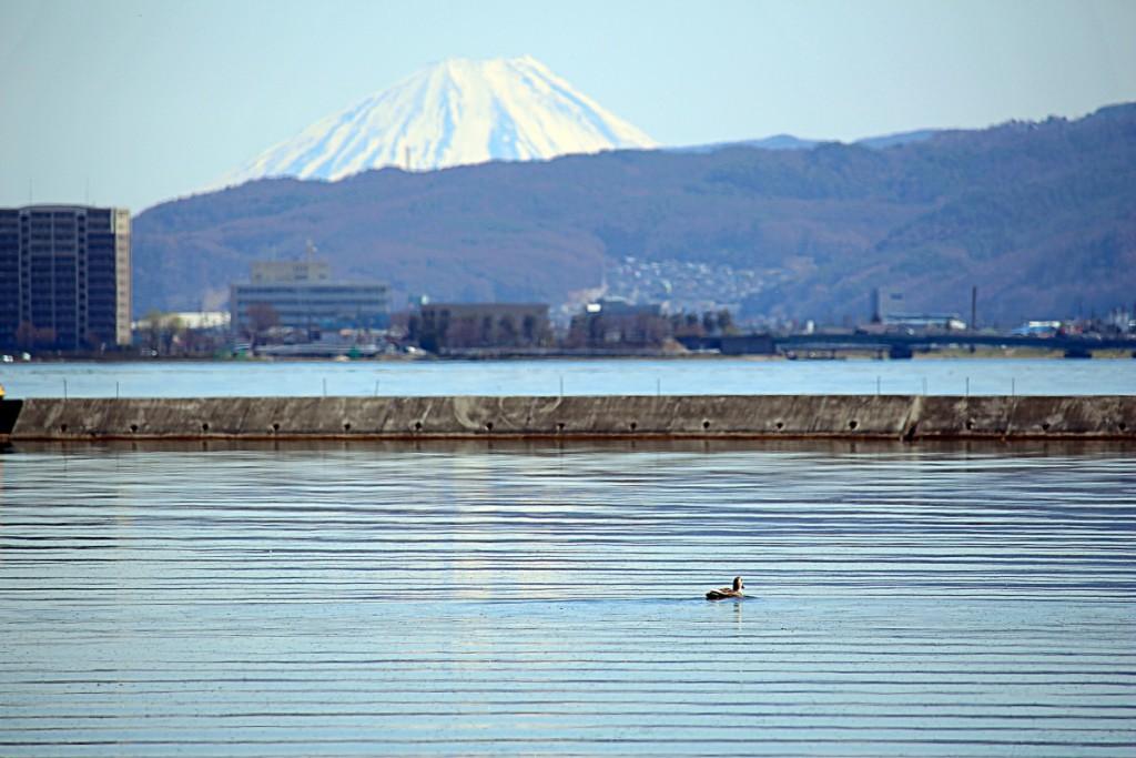 20150402_suwa_lake_18